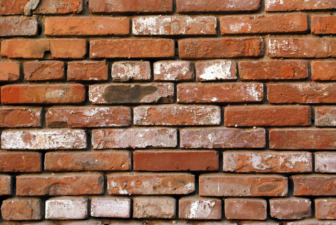 cómo limpiar una pared de ladrillos?