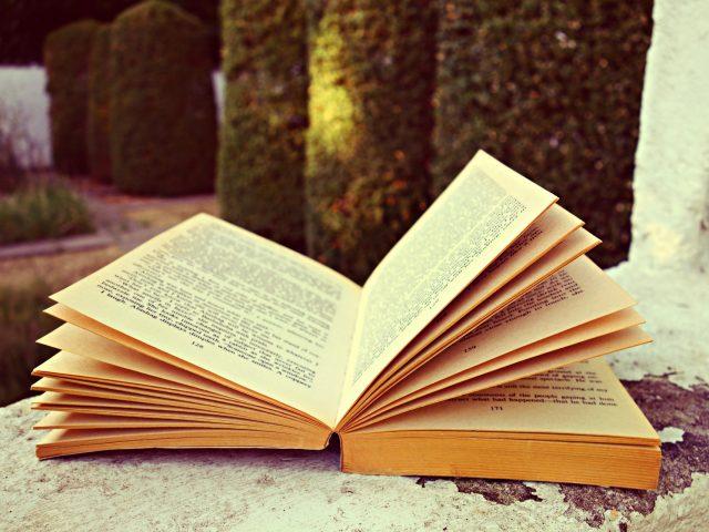 Cómo limpiar un libro?