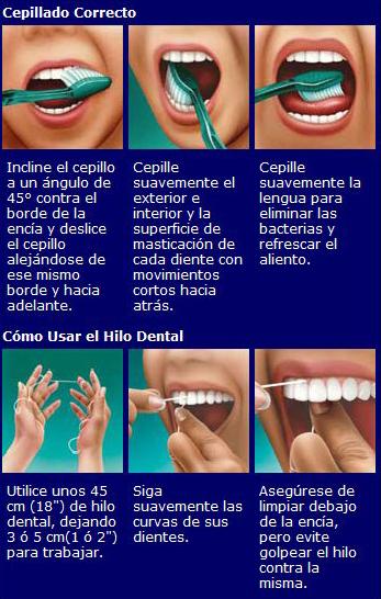 Uso correcto del cepillo de dientes - 2 3