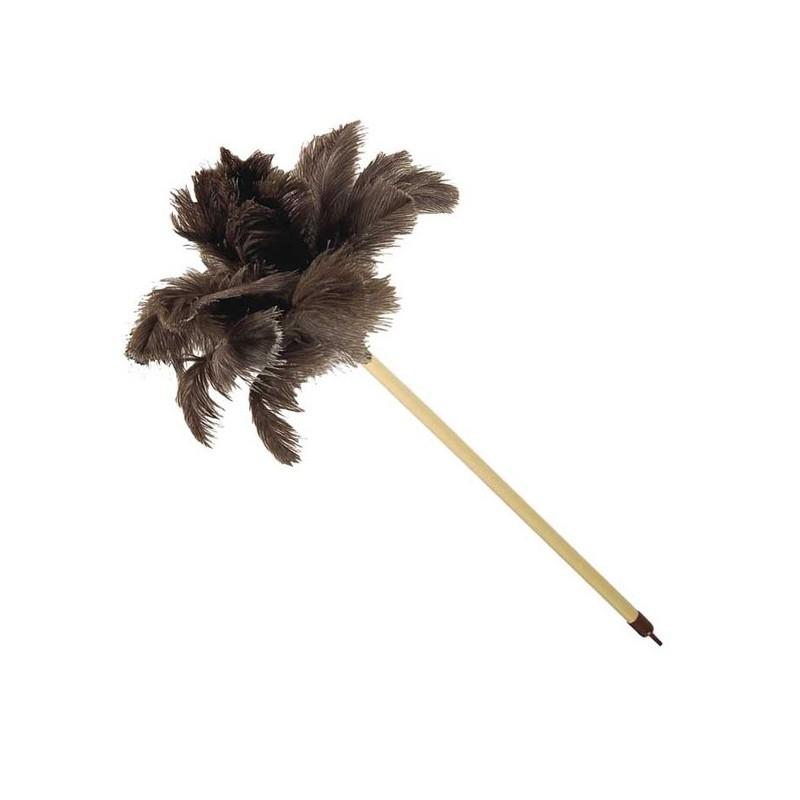 http://www.como-limpiar.com/wp-content/uploads/2011/11/Plumero-de-avestruz.jpg