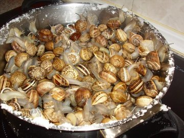 como-limpiar-caracoles-comestibles
