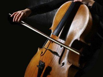 como-limpiar-un-violoncello