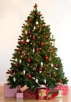 Cómo limpiar un árbol de navidad?