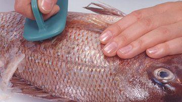como-limpiar-las-escamas-de-un-pescado