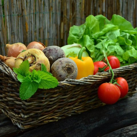 Las verduras y hortalizas son esenciales para mantener una dieta equilibrada